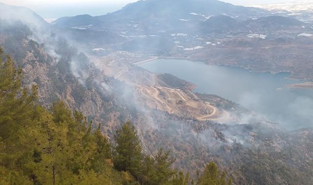 Ormancık'ta orman yangını